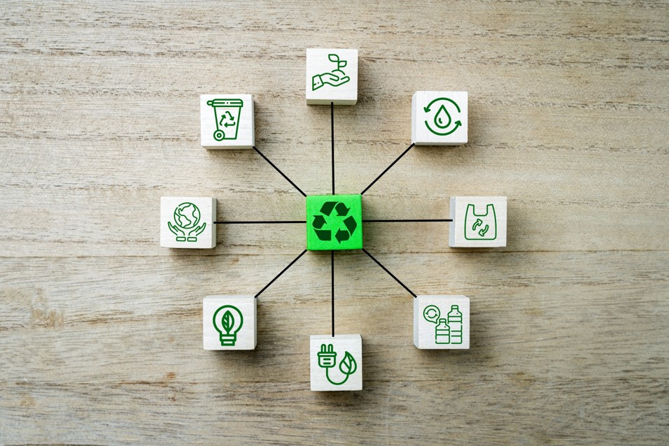 ESG: sustentabilidade empresarial em destaque