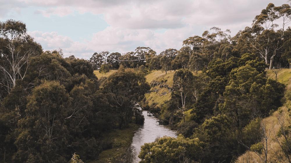Tecnologia é criada para prever riscos de agressões à Amazônia.